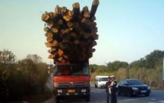 Страхование ответственности автоперевозчиков